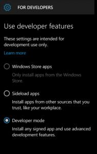 Windows-Phone-Developer-Option